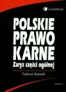 Polskie prawo karne. Zarys części ogólnej