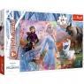 Puzzle maxi 24: Frozen 2 - W poszukiwaniu przygód (14322) Wiek: 3+