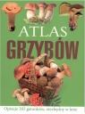 Atlas grzybów BR Sławomir Sokół