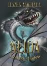 Neida i zemsta bogów