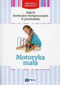 Zajęcia korekcyjno-kompensacyjne w przedszkolu Motoryka mała