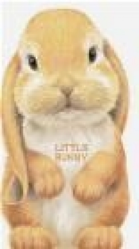 Little Bunny Giovanni Caviezel