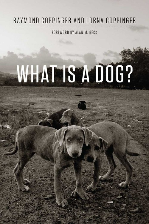 What Is a Dog? Coppinger Raymond, Coppinger Lorna