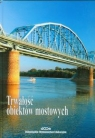 Trwałość obiektów mostowych