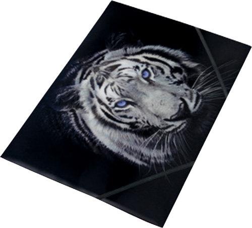 Tiger teczka na gumkę z nadrukiem A4 pp