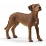 Pies rasy rhodesian ridgeback - Schleich (13895)