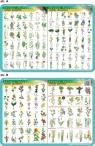 Podkładka edukacyjna. Rośliny ogrodowe, uprawne, pospolite i