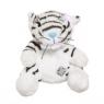 Niebieski nosek - biały tygrys Bengal (G73W0175)