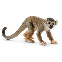 Małpa wiewiórkowata - 14723
