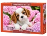 Puzzle Pup in Pink Flowers 500 elementów (52233)