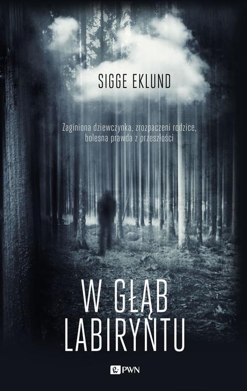 W głąb labiryntu Eklund Sigge