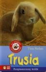Trusia - Rozpieszczony królik.