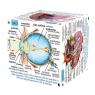 Cube Book Kostka edukacyjna Ludzkie ciałoPoziom 3 zaawansowany
