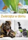 Zwierzęta w domu Brańska-Oleksy Izabela