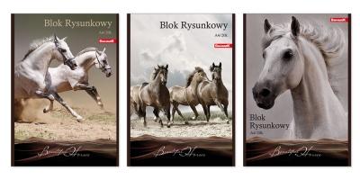 Blok rysunkowy Dan-Mark A4/20 biały Horses (1015)