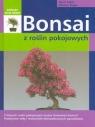 Bonsai z roślin pokojowych Stahl Horst, Ruger Helmut