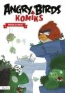 Angry Birds - Operacja Omlet