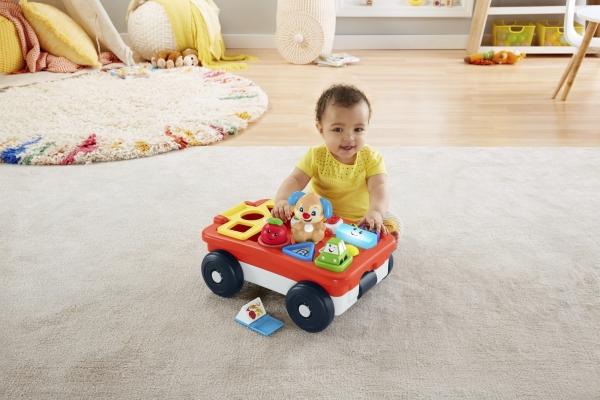Edukacyjny wózek szczeniaczka (GHV14)