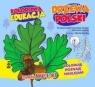 Kolorowa edukacja - Drzewa Polski