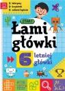 Łamigłówki 6-letniej główki Labirynty krzyżówki zadania logiczne