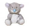 Niebieski nosek - miś koala Gumgum (G73W0002)
