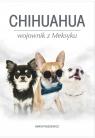 Chihuahua wojownik z Meksyku Paszkiewicz Marta