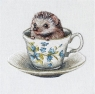 Karnet kwadrat z kopertą Baby Hedgehog