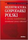 Mezostruktura gospodarki Polski w okresie transformacji