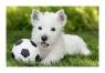 Puzzle mini 54: Pupile Pies biały (19424)