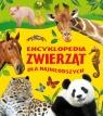 Encyklopedia zwierząt dla najmłodszych