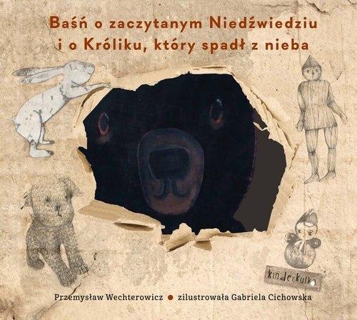 Baśń o zaczytanym Niedźwiedziu i o Króliku, który spadł z nieba Wechterowicz Przemysław