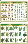 Podkładka edukacyjna. Grzyby, rośliny lecznicze i zioła, drzewa