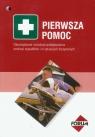 Pierwsza pomoc Obowiązkowe instrukcje postępowania podczas wypadków i w Panufnik Krzysztof, Matecka Violetta, Bartkowiak Michał