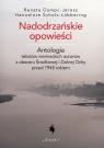 Nadodrzańskie opowieści Antologia tekstów niemieckich autorów z Dampc-Jarosz Renata, Scholz-Lubbering Hannelore