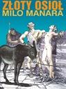 Złoty osioł Manara Milo