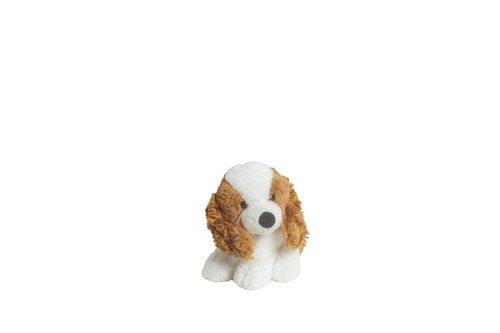 Molli Toys Piesek Cocker Spaniel 17 cm