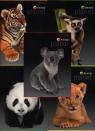 Zeszyt A5 Top-2000 w kratkę 32 kartki Animal Planet mix