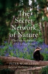 Secret Network of Nature Wohlleben Peter