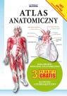 Atlas anatomiczny 3 plakaty gratis