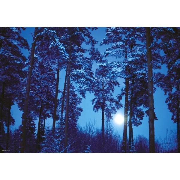 HEYE 500 EL. Full Moon, Magic Forest
