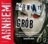 Dziewiąty grób (audiobook) Ahnhem Stefan