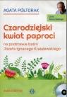 Czarodziejski kwiat paproci  (Audiobook)
