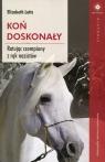 Koń doskonały Ratując czempiony z rąk nazistów Letts Elizabeth