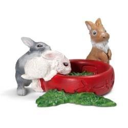 Młode króliki new 2013 (13725)