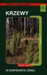 Krzewy w gospodarce leśnej Poradnik leśnika Gil Wojciech