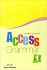 Access 1 Grammar (International)