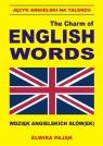 Język angielski na talerzu The Charm of English Words Wdzięk angielskich słów(ek)