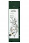 Ołówek Graphite Aquarelle 5 sztuk w metalowym opakowaniu (117805)