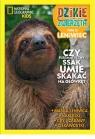 Dzikie Zwierzęta cz.21 Leniwiec