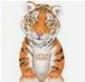 Little Tiger Giovanni Caviezel
